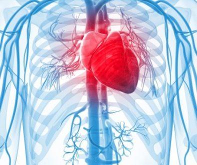 Le point sur les mutuelles santés: les mutuelles santés de long en large